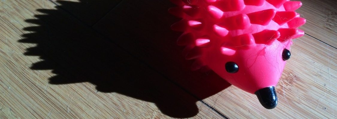 Pink porcupine chew toy